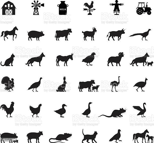 Farm and domestic animals vector id493337800?b=1&k=6&m=493337800&s=612x612&h=8bnsxfca8zichn138rvyintya4qqzxpfmjnc 2ep va=