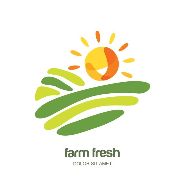 Farm and farming vector label, emblem design. Isolated illustration of fields, farm landscape and sun. Farm and farming vector label, emblem design. Isolated illustration of fields, farm landscape and sun. Concept for agriculture, harvesting, natural farm, organic products. valley stock illustrations
