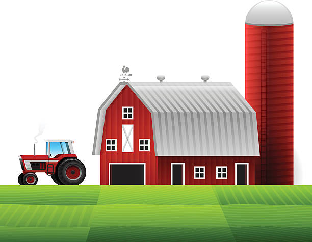 Best Barn Illustrations Royalty Free Vector Graphics