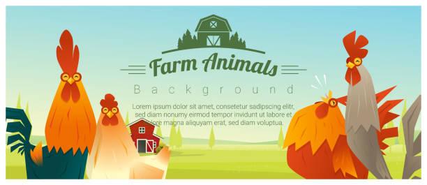 stockillustraties, clipart, cartoons en iconen met boerderij dieren en landelijke landschap achtergrond met kippen, vector illustratie - poultry farm