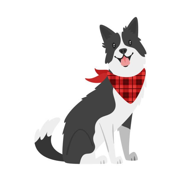 farm animal - dog Vector cartoon style illustration of  farm animal - dog. Isolated on white background. sheepdog stock illustrations