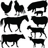 Vector illustration of Farm Animal Silhouettes.