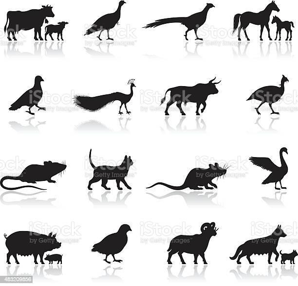 Farm animal silhouettes vector id483209856?b=1&k=6&m=483209856&s=612x612&h=5slwh5hhvkoxqhsbe sb2ruu ufa8iiehk 2kr7hgrk=