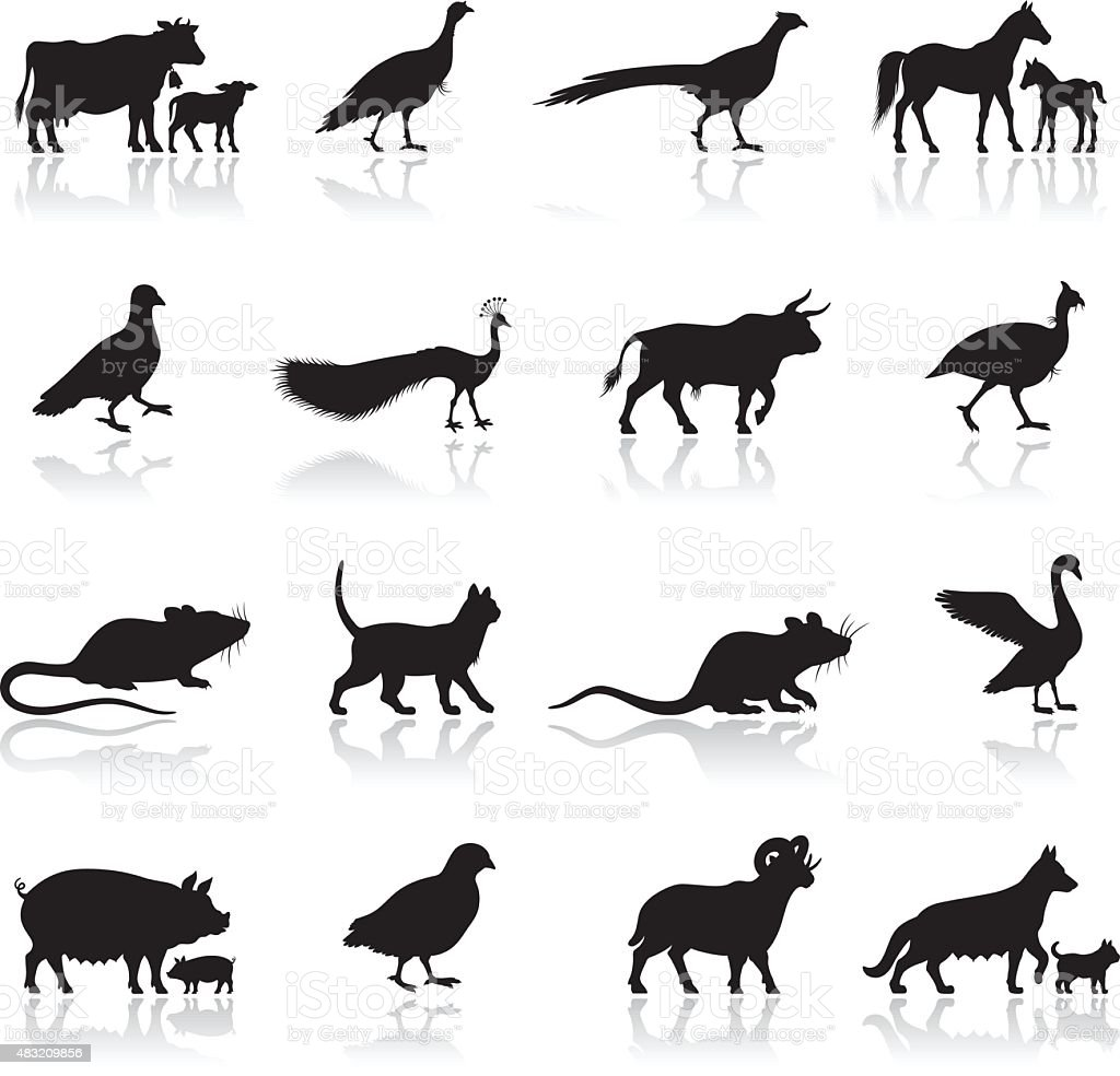 Farm Animal Silhouettes vector art illustration