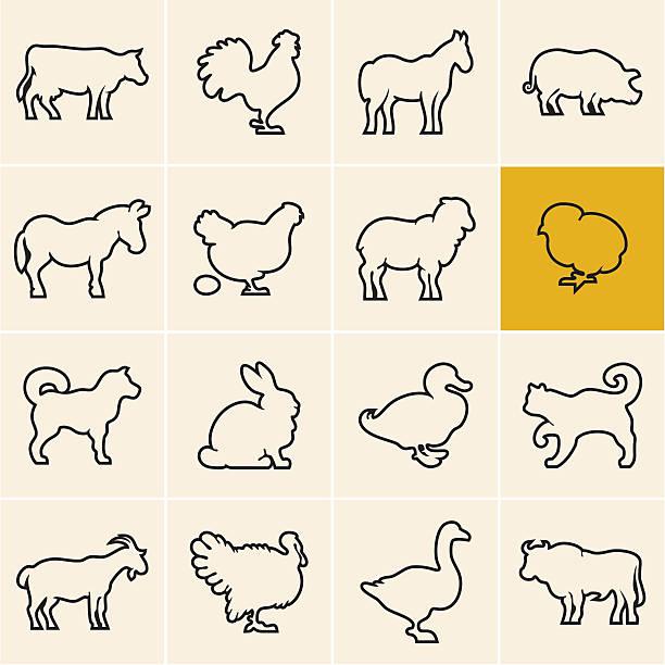 illustrations, cliparts, dessins animés et icônes de animaux de la ferme. animaux icônes contour. - animaux de la ferme