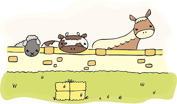 bildbanksillustrationer, clip art samt tecknat material och ikoner med farm animals behind a wall - balpress