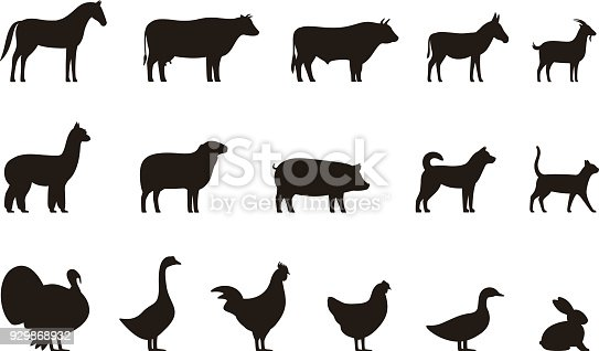 Livestock, Farm animals black icons set, vector illustration