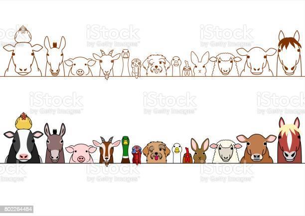 Farm animals border set vector id802264484?b=1&k=6&m=802264484&s=612x612&h= rac2bhjvujyhyljg3tzj9po81cpbkjcxtwrgxgzodc=