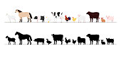Farm animals border set.