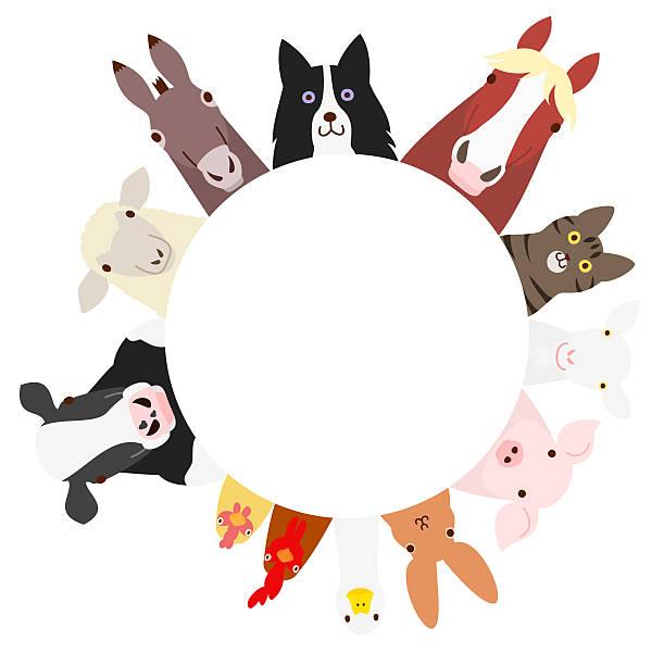 farm animals circle - collie stock-grafiken, -clipart, -cartoons und -symbole