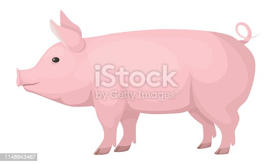 Concept of farm animals. Cute, funny, pink domestic pig, medium size. Family of non-ruminant wild boar subspecies. Cartoon vector illustration isolated.