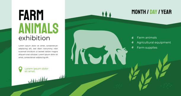stockillustraties, clipart, cartoons en iconen met boerderij dieren tentoonstelling identity template - pig farm