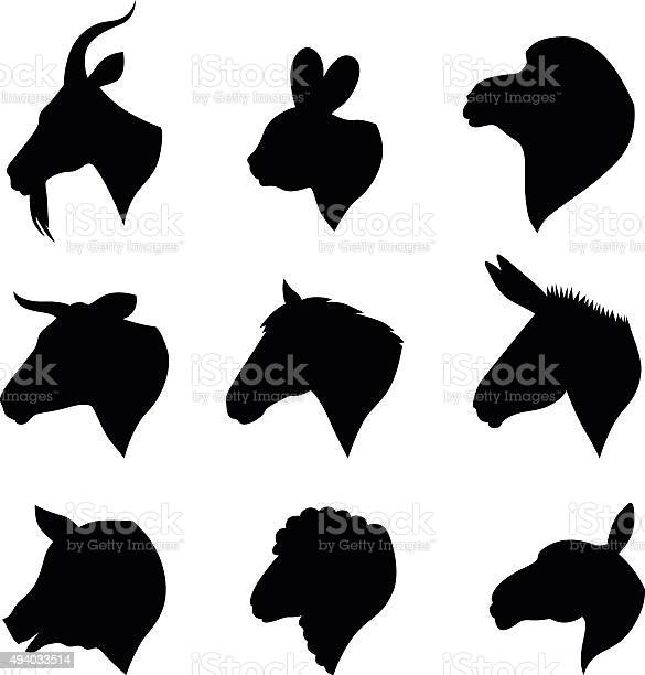 Farm animals heads set vector id494033514?b=1&k=6&m=494033514&s=612x612&h=21kcx3dujdwky1o8x6knmp8jq5i vjrh0vg5mlcfyfa=
