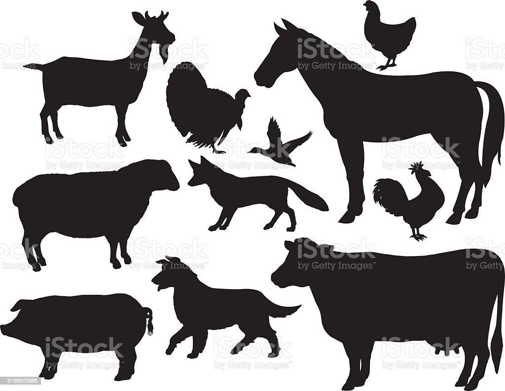 Animales de granja y caballo, vacuno y cerdo, cabra, Fox, pollo, Gallo - ilustración de arte vectorial