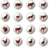 Farm Animals Icon Set. High Resolution JPG,CS5 AI and Illustrator EPS 8 included. Each element is named,grouped and layered separately.