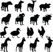 Many different farm animal silhouettes. These livestock silhouettes are all in three quarter view.