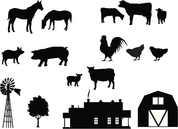 farm animals in silhouette - farm animals stock illustrations, clip art, cartoons, & icons