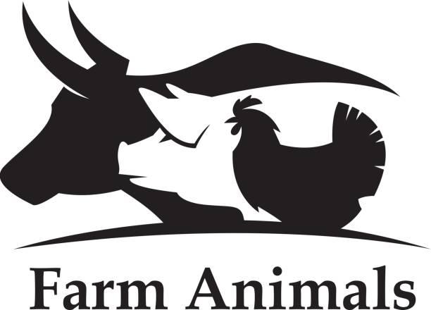 stockillustraties, clipart, cartoons en iconen met boerderij dieren label - pig farm