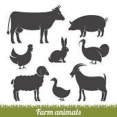 farm animals minimal