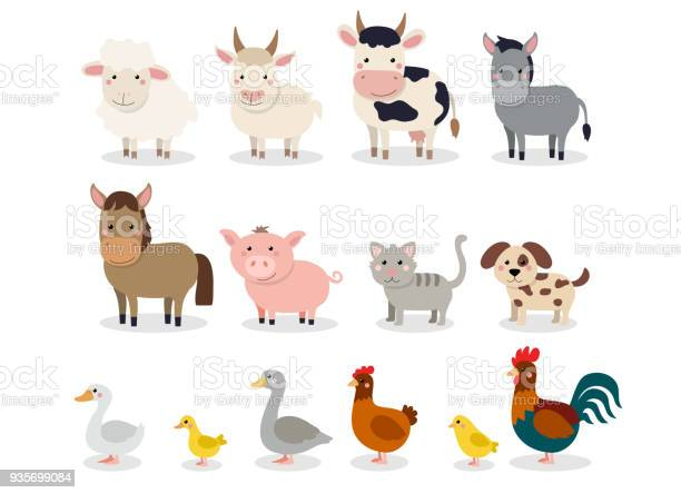 Farm animals set in flat style isolated on white background vector vector id935699084?b=1&k=6&m=935699084&s=612x612&h=wcvvekfy8honuvqnunxlhlbdma4 dung7igfvkq4qvi=