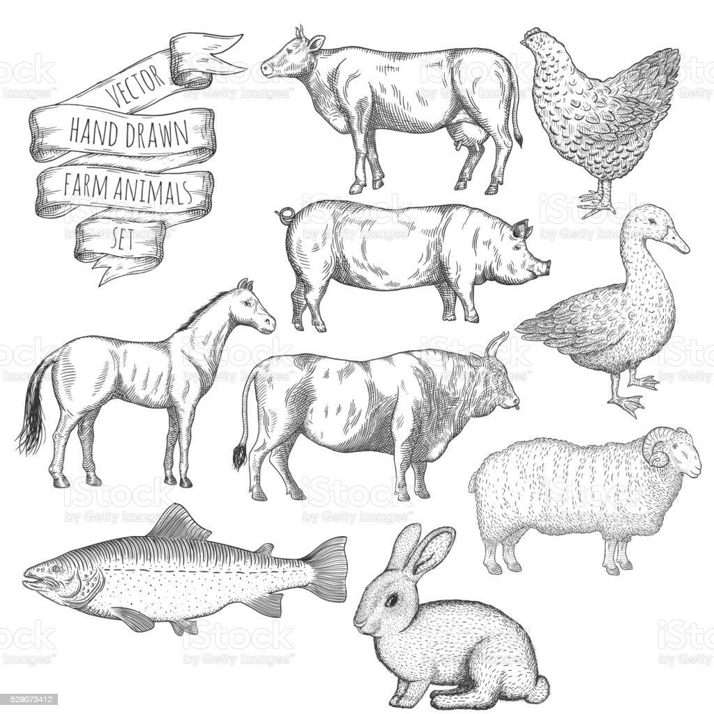 Farm animals set. royalty-free farm animals set stock illustration - download image now