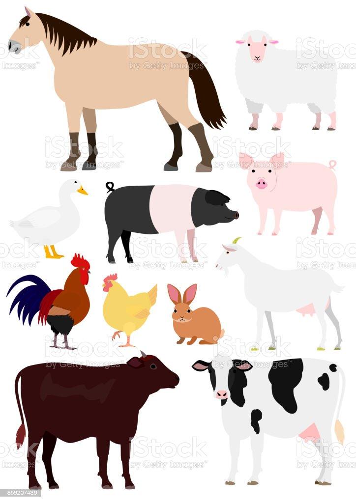 Farm animals set vector art illustration