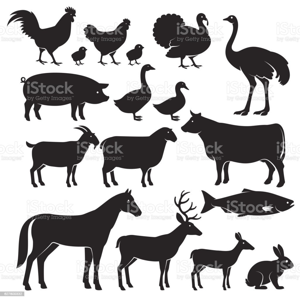 Farm animals silhouette icons.