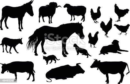 Various farm domestic animals silhouettes on white background