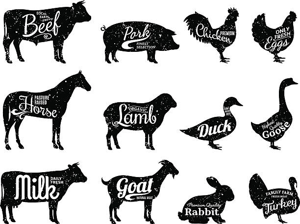 Farm Animals Silhouettes Collection, Butchery Labels Templates Set of butchery labels templates. Farm animals with sample text. Retro styled farm animals silhouettes collection for groceries, meat stores, packaging and advertising. poultry stock illustrations