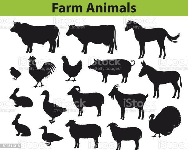 Farm animals silhouettes collection with cow bull horse hen chicken vector id824841318?b=1&k=6&m=824841318&s=612x612&h=ijbg7y xzobzaindr sqawhbzqfljqh1u1effvjwmba=