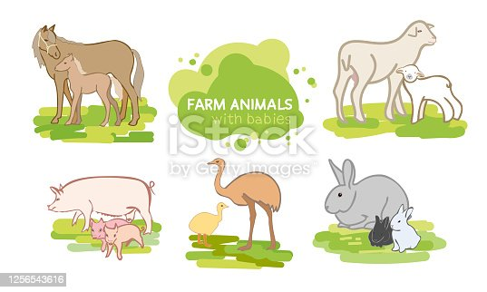 Vector set of farm animals. Pig, sheep, horse, rabbit, ostrich, mother and baby. Flat design.