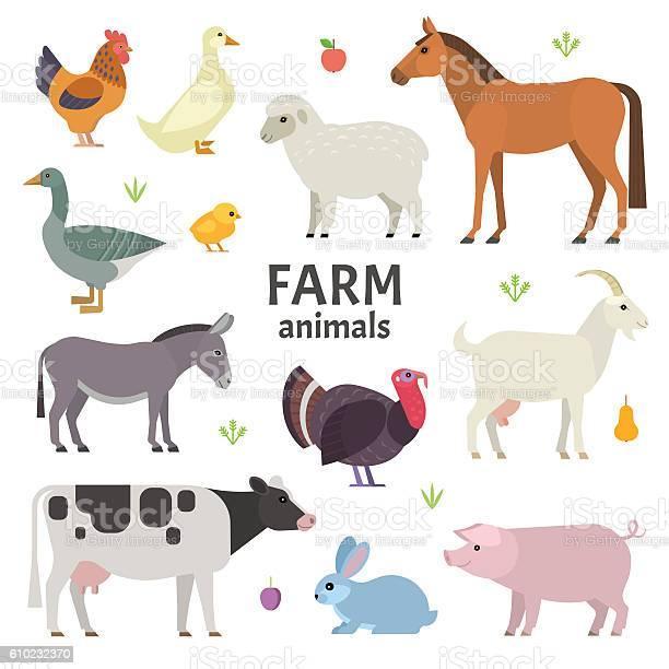 Farm animals vector id610232370?b=1&k=6&m=610232370&s=612x612&h=yvmcjxk6hqtvsuivu0hsjwfefbwtppnsmnn93i21oqk=