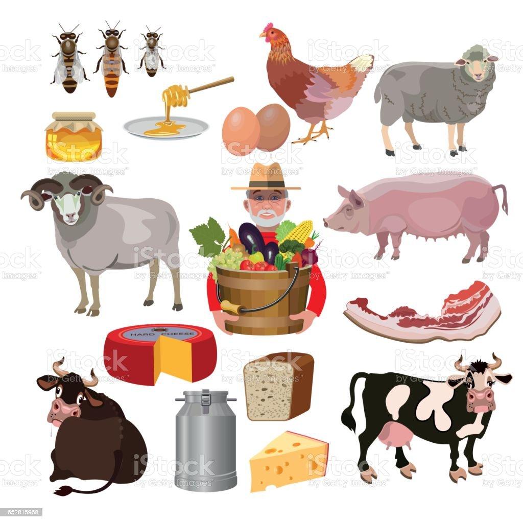Farm animals - Illustration vectorielle