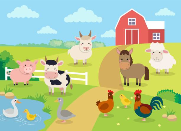 nutztiere mit landschaft - niedlichen cartoon-vektor-illustration mit bauernhof, kuh, schwein, pferd, ziege, schafe, enten, henne, huhn und hahn - entenhaus stock-grafiken, -clipart, -cartoons und -symbole