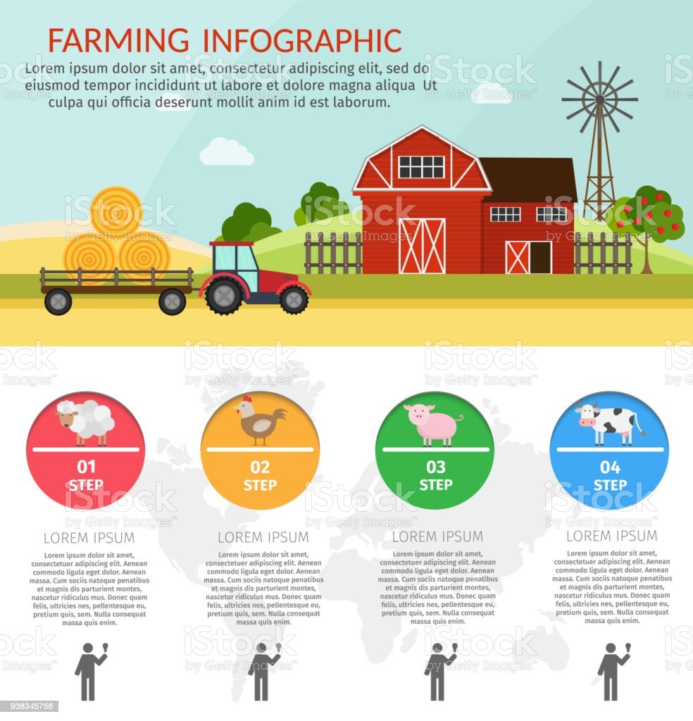 Farm Cartoon Flat Infographic Background With Barn Animals Tools Tractor Royalty