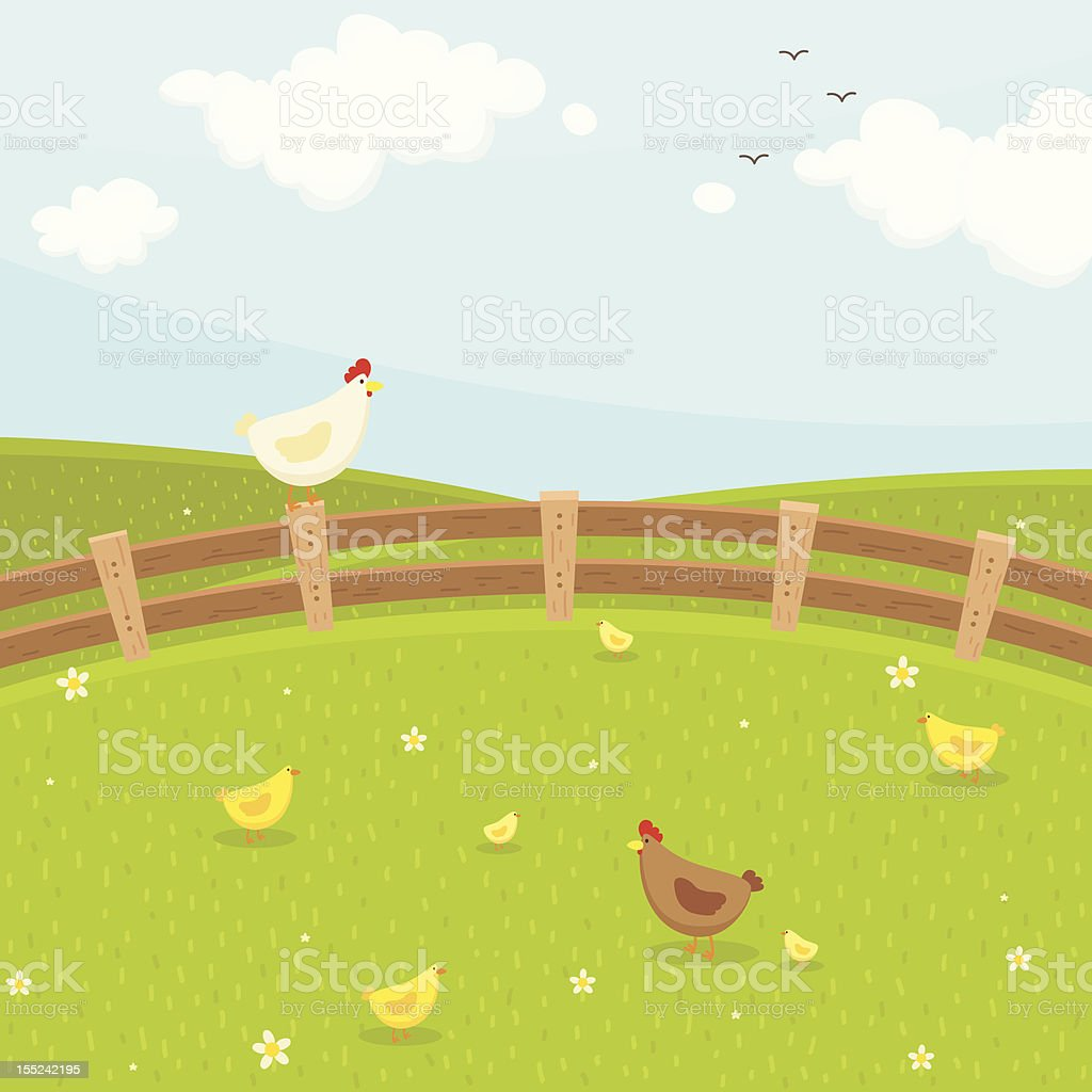 Farm chicken family royalty-free stock vector art