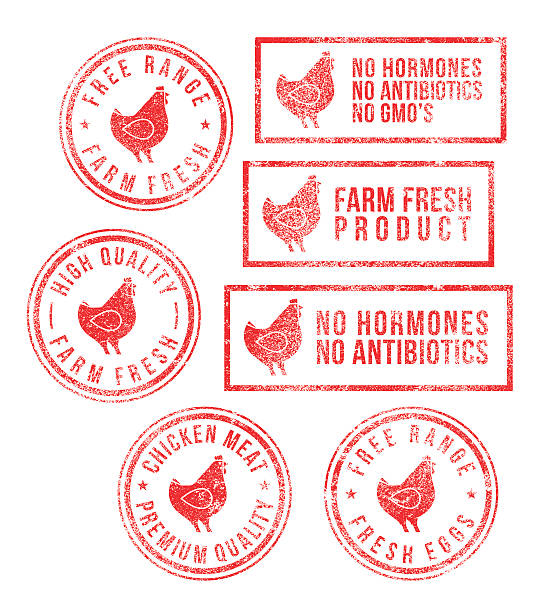 Farm Chicken Meat Eggs Rubber Stamps Rubber stamps with farm chicken meat and egg fresh healthy food products (free range, farm fresh, fresh eggs, high quality, chicken meat, no hormones, no antibiotics, no gmo). High resolution JPG, PDF, PNG (transparent background) and AI files available with this download. poultry stock illustrations