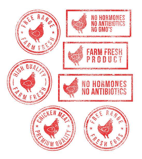 stockillustraties, clipart, cartoons en iconen met farm chicken meat eggs rubber stamps - poultry farm