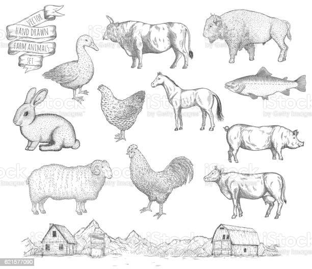 Farm collection vector vector id621577090?b=1&k=6&m=621577090&s=612x612&h=j7ih8p03tmqc1hjy6wsbfuiyftiilabcii674ykr4bq=