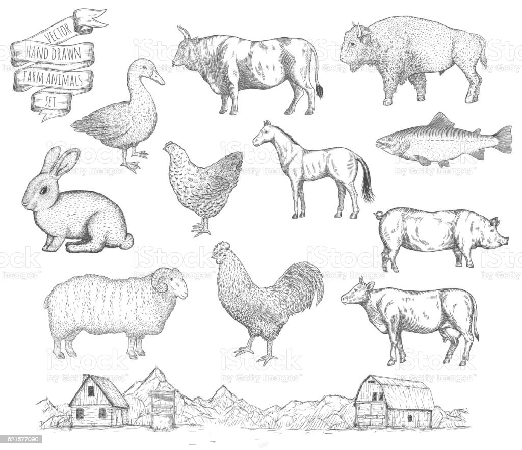 Farm collection vector. vector art illustration