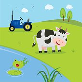 Farm. Cow with tractor with pond.