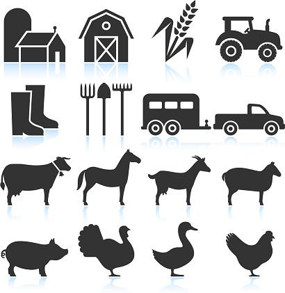 Farm Equipment and Animals black & white vector icon set