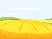 Wheat hill field with stalks and green plants on background, ukrainian summer landscape, harvest time