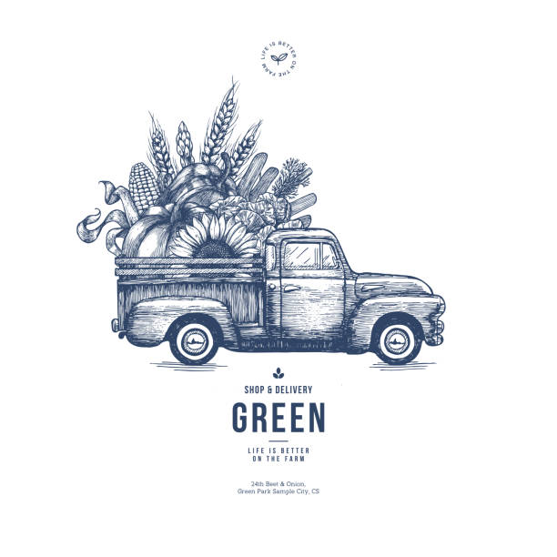 farm fresh delivery design template. classic vintage pickup truck with organic  vegetables. vector illustration - root vegetable stock illustrations