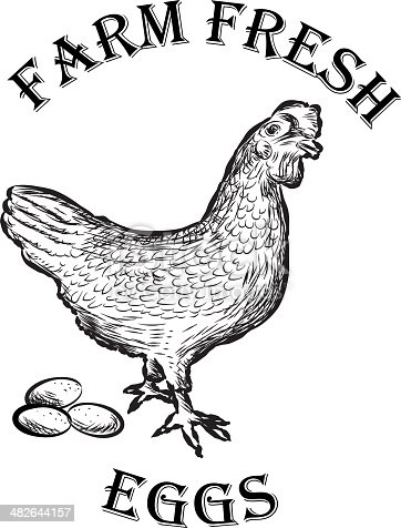 Farm Fresh Eggs Design Gm482644157 37837582
