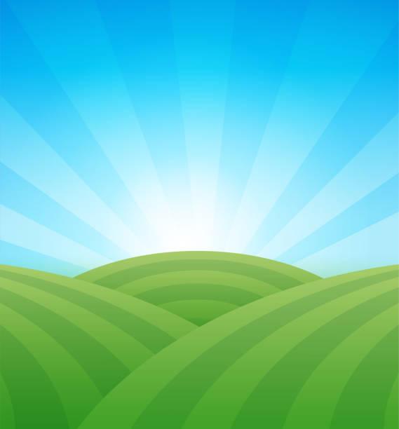 bildbanksillustrationer, clip art samt tecknat material och ikoner med farm gröna fält med kullar under blå klar sommarhimmel-vektor illustration. - fält