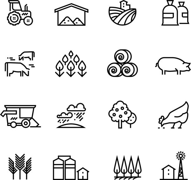 Best Rural Lifestyle Illustrations, Royalty-Free Vector