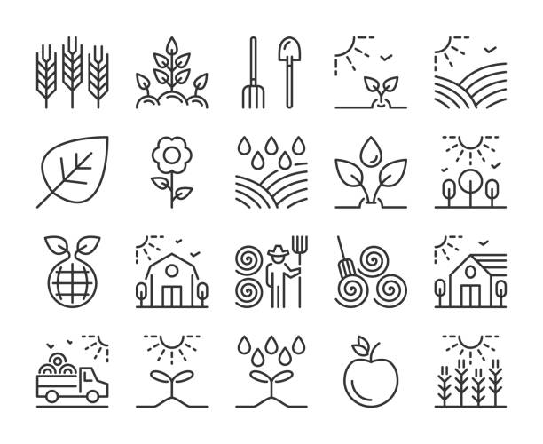 Farm icon. Agriculture and Farming line icons set. Editable stroke. Farm icon. Agriculture and Farming line icons set. Editable stroke. crop plant stock illustrations