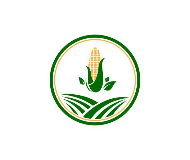 farm icon - corn field stock illustrations, clip art, cartoons, & icons