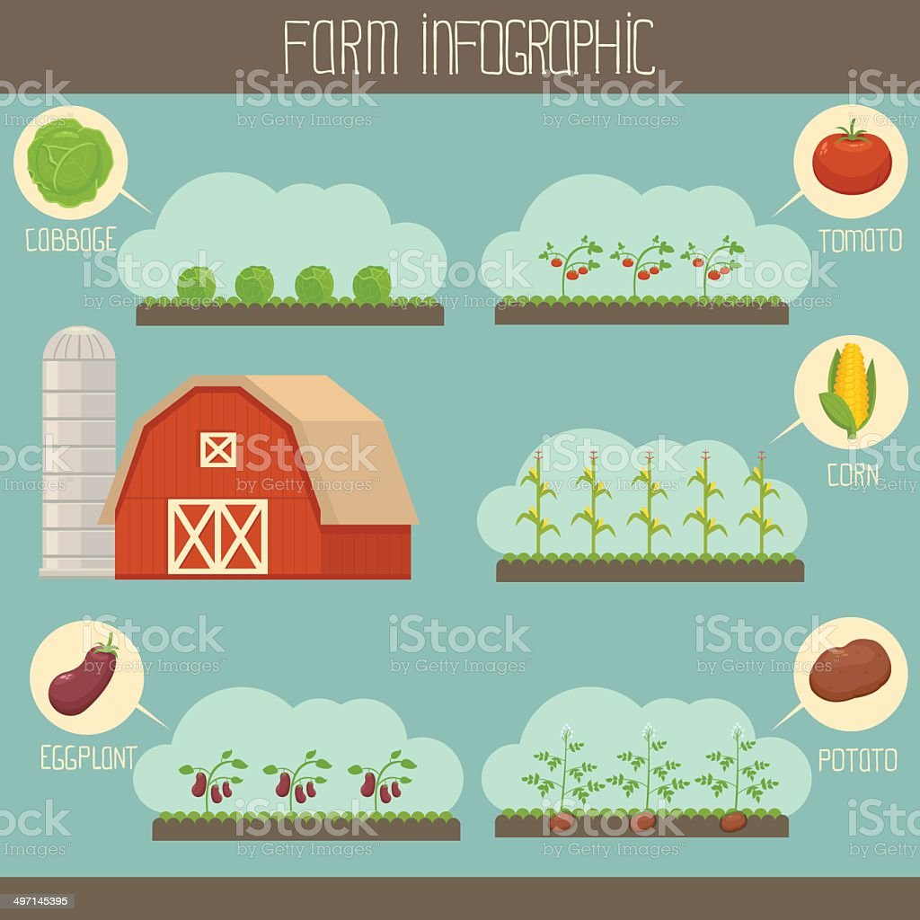 Farm infographic vector art illustration